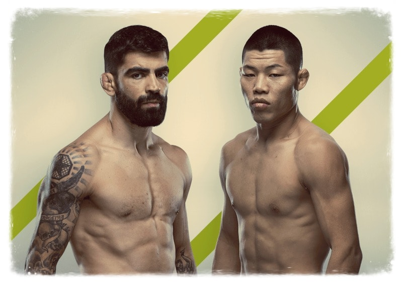 ehlizeu-dos-santos-li-czinlyan-video-boya-na-ufc-fight-night-157-ufc-on-espn-15